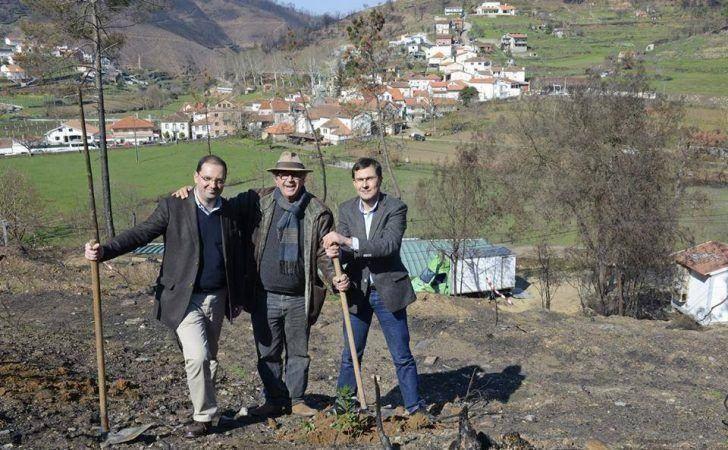 Câmaras Municipais de Arganil e Lisboa reúnem-se em Pomares para ação de reflorestação