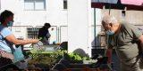 Município de Arganil isenta de taxas comerciantes e feirantes